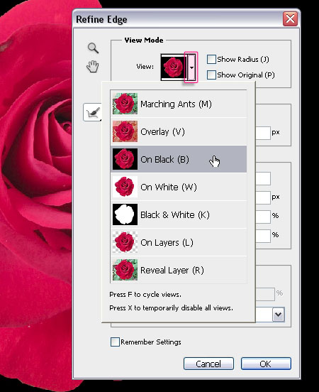 Velvet Roses Text Effect step 4