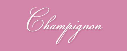Calligraphy-Champignon
